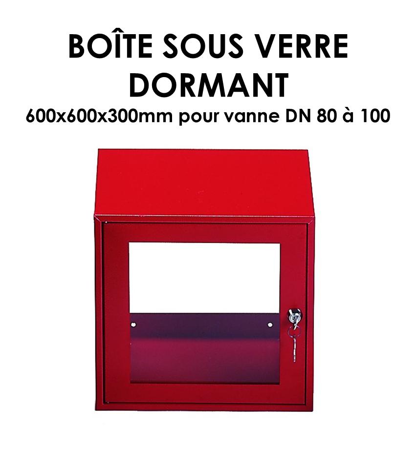 Boîte sous verre dormant B 366-01