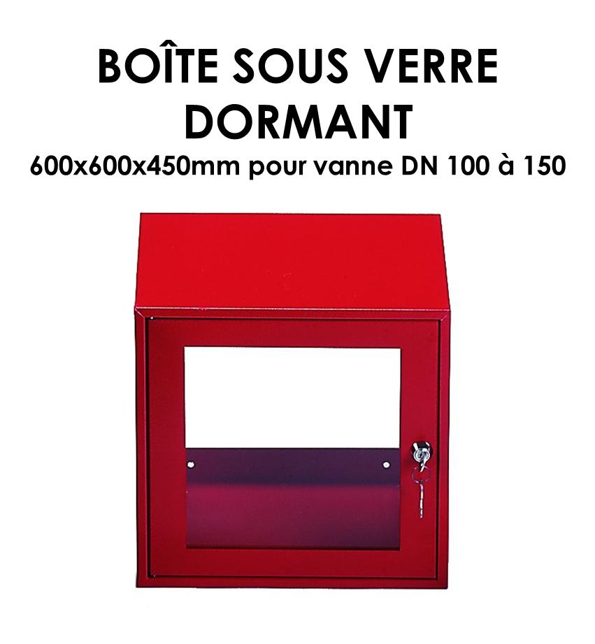 Boîte sous verre dormant B 466-01