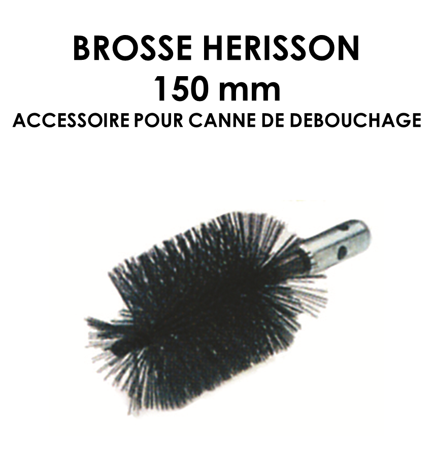 Brosse hérisson 150mm-01