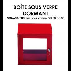 Boîte sous verre dormant B 366-20