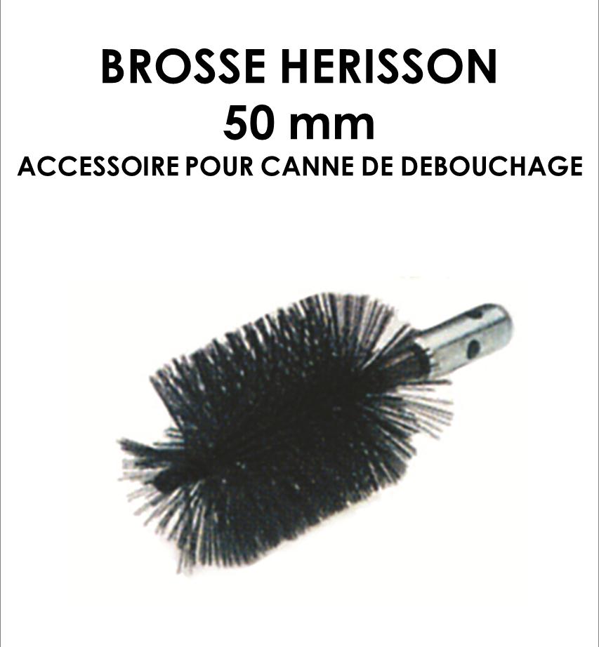 Brosse hérisson 50mm-01